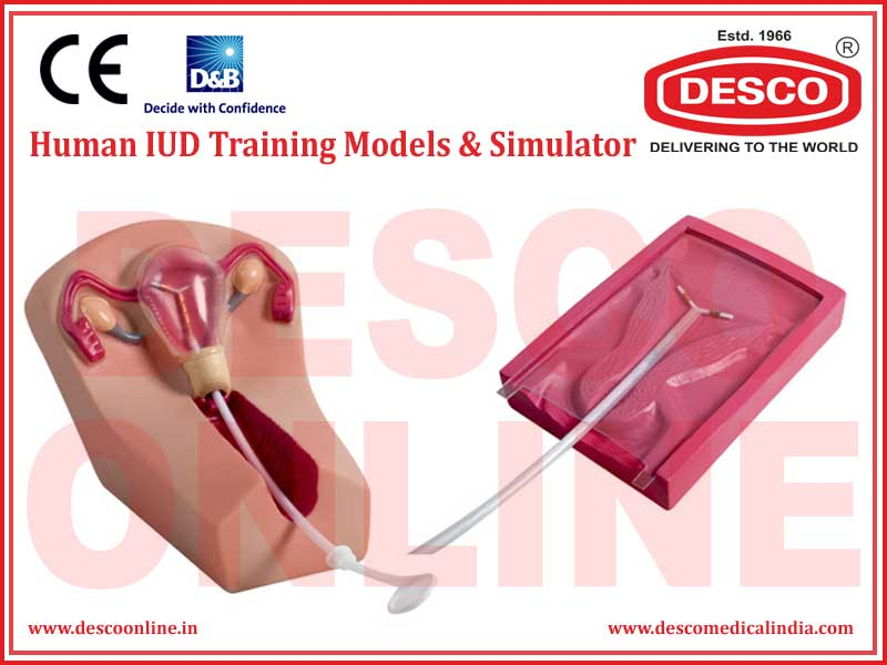 HUMAN IUD TRAINING MODELS & SIMULATOR